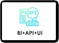 BI+API+UI